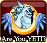Are You YETI
